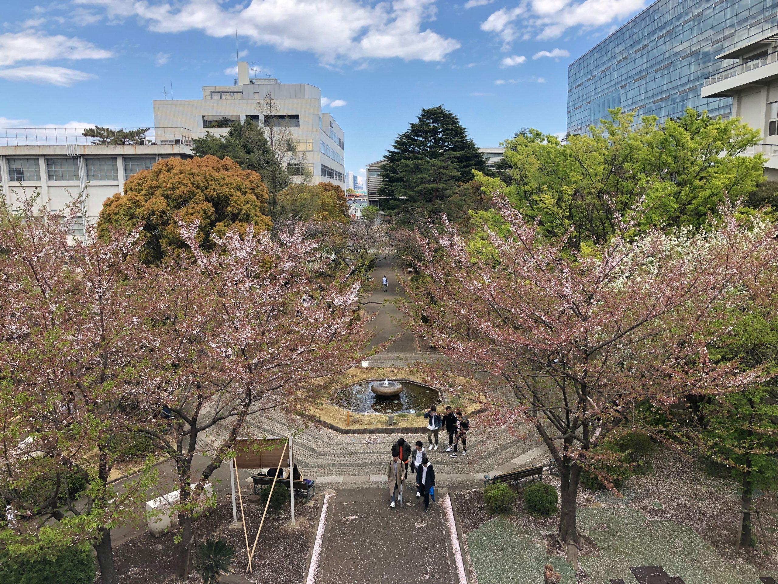 赤本 南山 大学