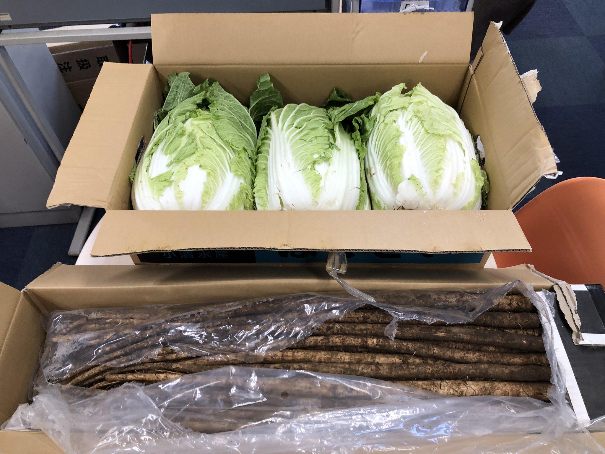 北の大地から野菜が送られてきました